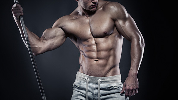 Muscle Sculptor – Get Chiseled