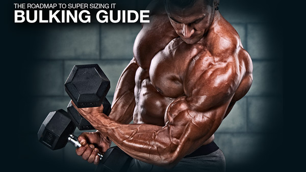 The Roadmap To Super Sizing It - Here Is Your Bulking Guide