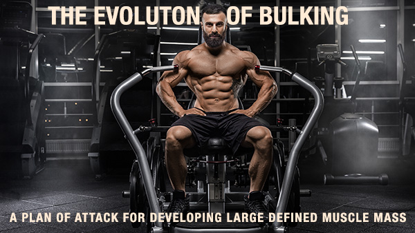 The Bulking Guide