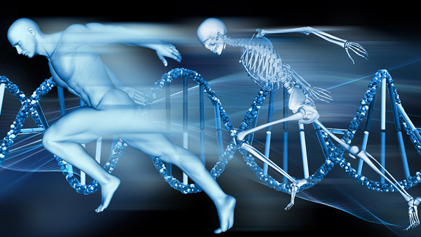 DNA Testing and The Future Of Fitness