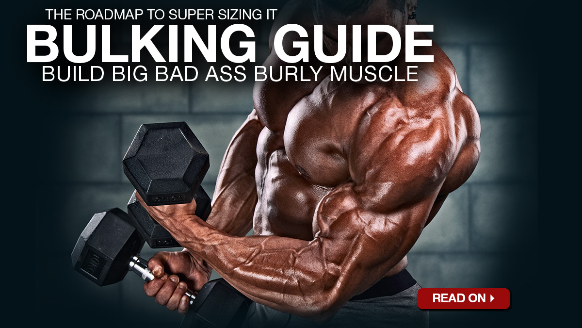 Bulking Season Is Here - Click Here To Read Its Guide