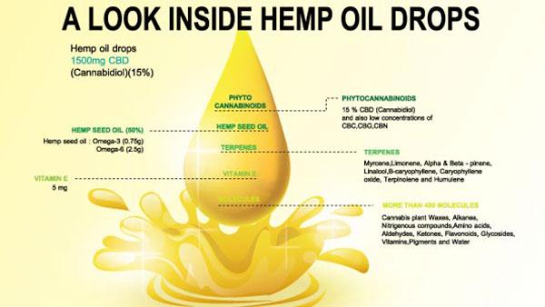 What's In A Drop Of CBD Oil